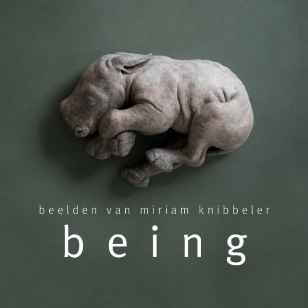 Miriam Knibbeler - book being